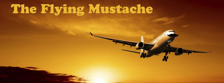 cropped-flyingmustache.jpg